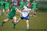 limerick v waterford minor camogie 3-4-2016 (37)