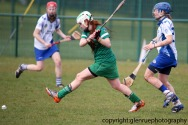 limerick v waterford minor camogie 3-4-2016 (38)