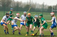 limerick v waterford minor camogie 3-4-2016 (4)