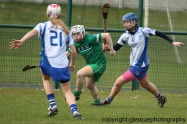 limerick v waterford minor camogie 3-4-2016 (40)