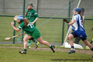 limerick v waterford minor camogie 3-4-2016 (41)