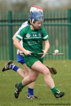 limerick v waterford minor camogie 3-4-2016 (42)