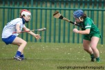 limerick v waterford minor camogie 3-4-2016 (44)