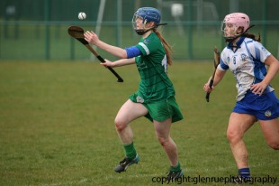 limerick v waterford minor camogie 3-4-2016 (45)