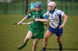 limerick v waterford minor camogie 3-4-2016 (46)