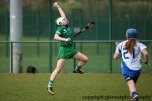 limerick v waterford minor camogie 3-4-2016 (48)
