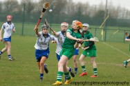 limerick v waterford minor camogie 3-4-2016 (5)