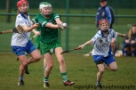 limerick v waterford minor camogie 3-4-2016 (50)