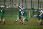 limerick v waterford minor camogie 3-4-2016 (51)