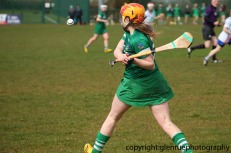 limerick v waterford minor camogie 3-4-2016 (53)