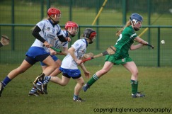 limerick v waterford minor camogie 3-4-2016 (56)