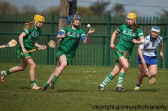 limerick v waterford minor camogie 3-4-2016 (57)