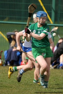 limerick v waterford minor camogie 3-4-2016 (58)