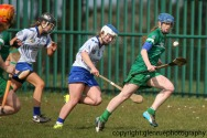 limerick v waterford minor camogie 3-4-2016 (59)
