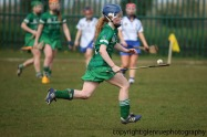 limerick v waterford minor camogie 3-4-2016 (61)