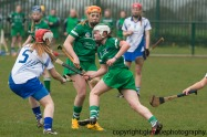 limerick v waterford minor camogie 3-4-2016 (7)