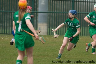 limerick v waterford minor camogie 3-4-2016 (8)
