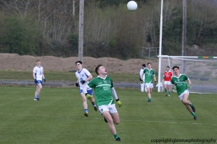 limerick v waterford minor football 27-4-2016 (12)