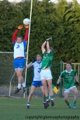 limerick v waterford minor football 27-4-2016 (29)