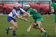 limerick v waterford munster semi final 8-5-2016 (106)