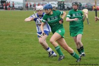 limerick v waterford munster semi final 8-5-2016 (112)