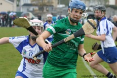 limerick v waterford munster semi final 8-5-2016 (113)