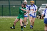 limerick v waterford munster semi final 8-5-2016 (19)