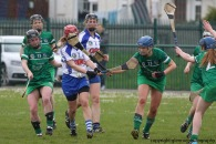 limerick v waterford munster semi final 8-5-2016 (30)