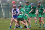 limerick v waterford munster semi final 8-5-2016 (73)