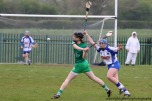 limerick v waterford munster semi final 8-5-2016 (8)