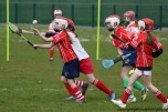 limerick v waterford munster semi final 8-5-2016 (81)