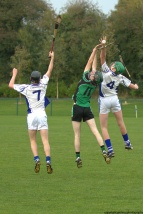 glenroe-v-croom-mminor-hurling-12