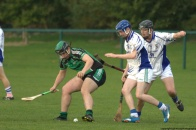 glenroe-v-croom-mminor-hurling-18