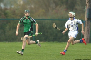 glenroe-v-croom-mminor-hurling-19