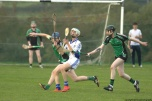 glenroe-v-croom-mminor-hurling-21