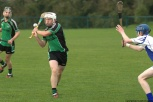 glenroe-v-croom-mminor-hurling-22