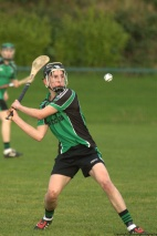 glenroe-v-croom-mminor-hurling-26