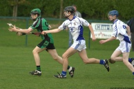 glenroe-v-croom-mminor-hurling-30