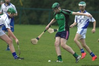 glenroe-v-croom-mminor-hurling-44
