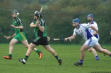 glenroe-v-croom-mminor-hurling-50
