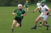 glenroe-v-croom-mminor-hurling-8